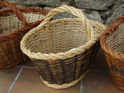 win a mushrooming basket in the raffle