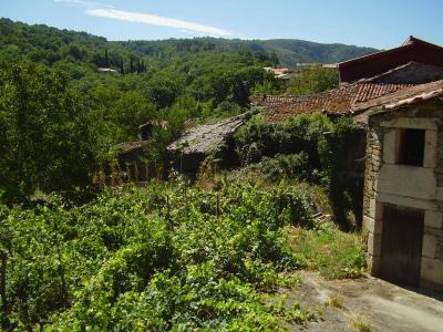 About The Ribeira Sacra Area