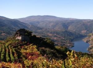 La Ribeira Sacra en Galicia