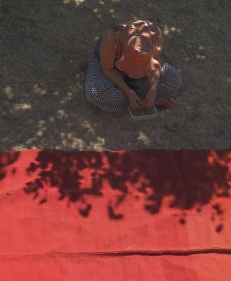 rosie sorting dyeseeds